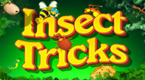 Insect Tricks